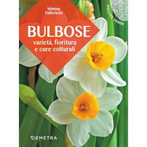 Bulbose. Varietà, fioritura e cure colturali