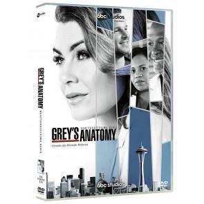 Grey's Anatomy. Stagione 14