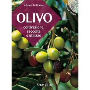 L'olivo. Coltivazione, raccolta e utilizzo