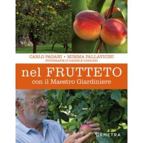 Nel frutteto con il maestro giardiniere