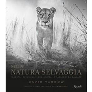 Nella natura selvaggia. Incontri ravvicinati con animali e paesaggi da salvare. Ediz. illustrata
