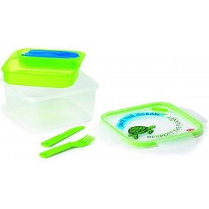 Lunch Box Ermetico da 1,4 LT-Quadrato, Trasparente con Decoro Tartaruga