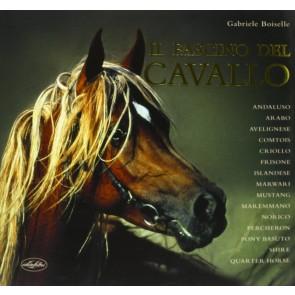 Il fascino del cavallo. Ediz. illustrata