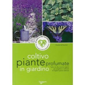 Coltivo piante profumate in giardino